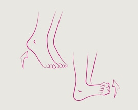 Раскачивание с пятки на носок, иллюстрирующее упражнение 1 гимнастики для вен